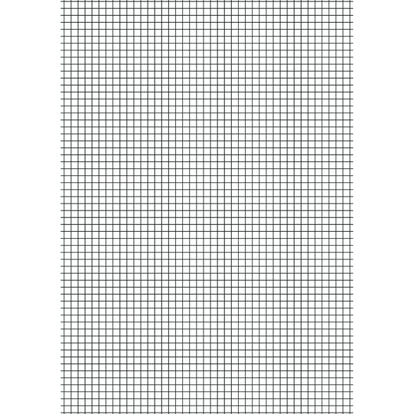 Loose Leaf Paper A4 10mm Squares (2500 Pack) EN09807