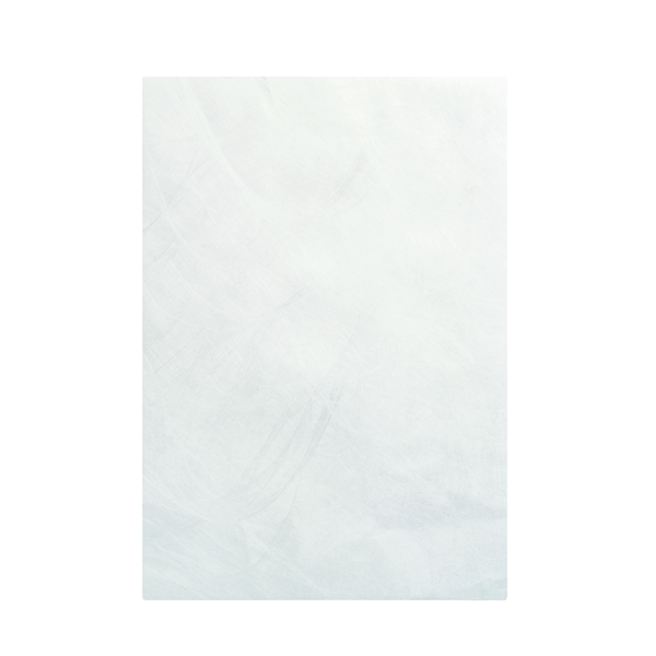 Tyvek Envelope 324 x 229mm Peel and Seal White (100 Pack) 555024